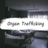 How much is a body worth? Organ Trafficking and the business of bodies.
