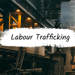 Labour exploitation: Are you playing a role?